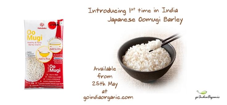 Hakubaku Oomugi Barley, Premium Barley in India
