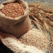 Organic Cereals & Grains (17)